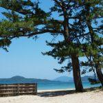 【計画】唐音水仙公園、津和野(島根県)、 萩、秋吉台(山口県)巡りのドライブコース。
